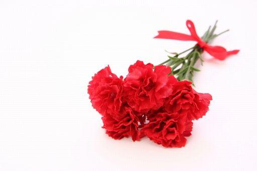 カーネーションの色別の花言葉は?意味や由来を紹介!悪い意味もあるの?赤色のカーネーション